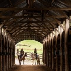horse-couple-barn-photo